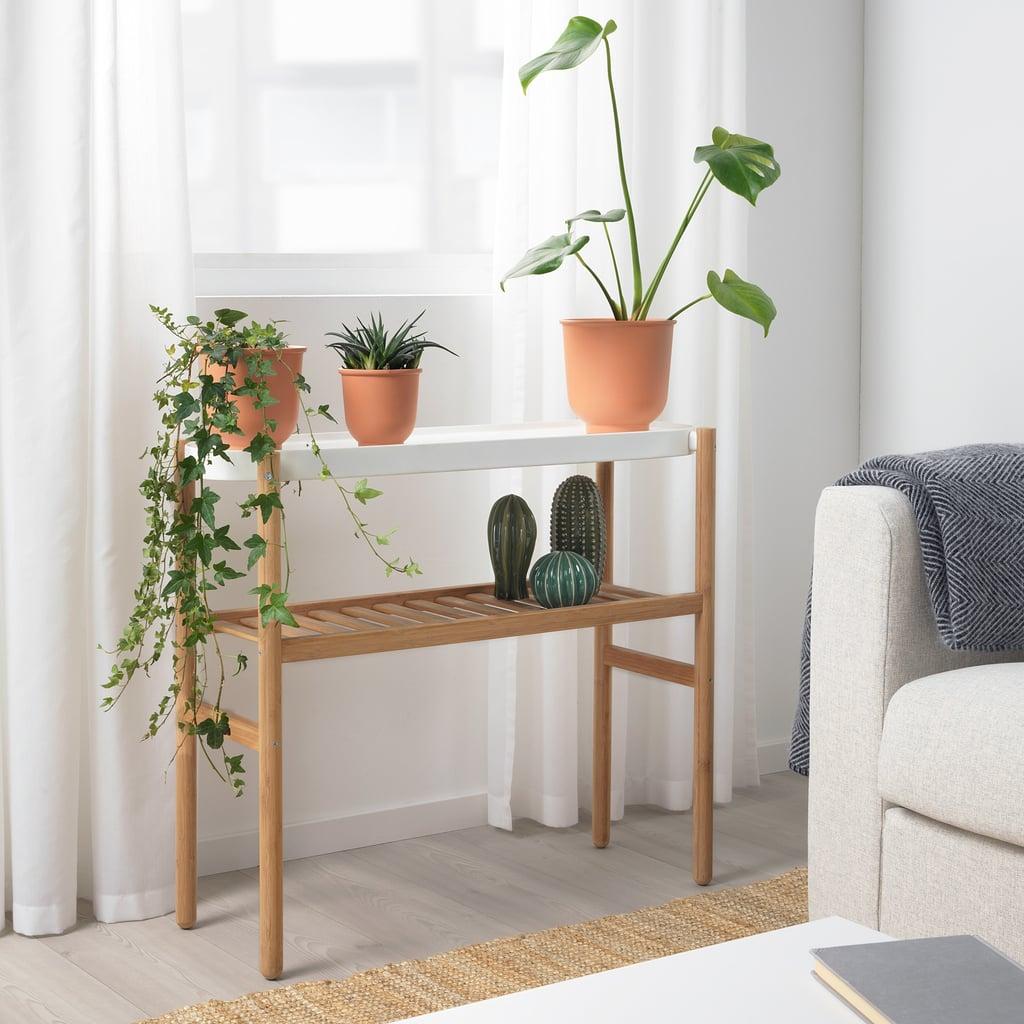 Satsumas Plant Stand