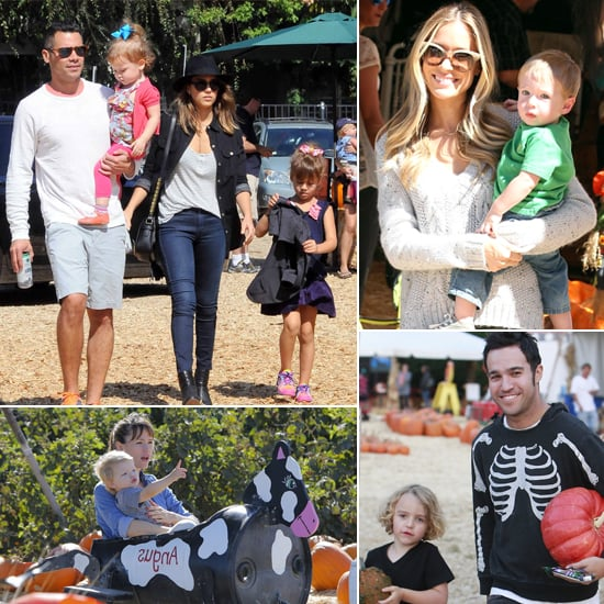 Celebrity Kids Love Pumpkin Picking!