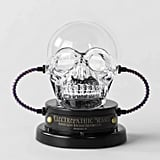 Animated LED Skull Plasma Ball