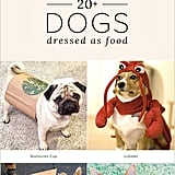 Food Halloween Costume Ideas For Dogs