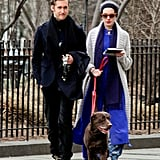 Anne Hathaway wore red sunglasses and a cap to take a walk with Adam Shulman and their dog.