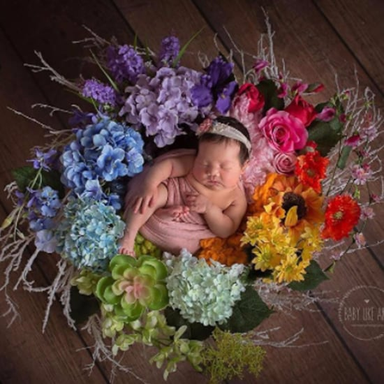 Rainbow Baby Photos 2016