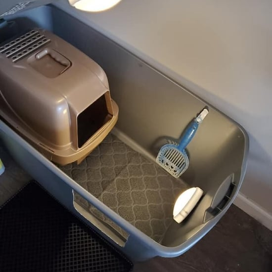 Litter-Box Hack to Stop Cats From Making a Mess on the Floor