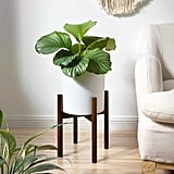 Mkono Plant Stand in Dark Brown
