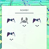 See what Pokémon are lurking nearby.