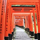 Visit the Fushimi Inari Taisha in Kyoto, Japan