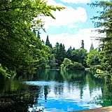 Another tranquil setting in the city is Laurelhurst Park. With over 26 acres and a breathtaking lake smack in the middle, this urban oasis is a great go-to for leisurely strolls, low-key picnics, and escaping any hustling city vibes.