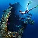 Explore a Shipwreck
