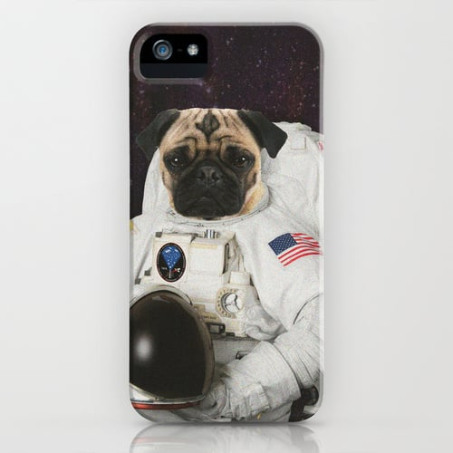 Sure, sure, you know Neil Armstrong was the first human on the moon, but this anonymous pug holds claim to first lunar-landing canine ($35). Cheers to you, pug!