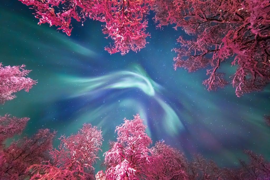 Auroral Crown