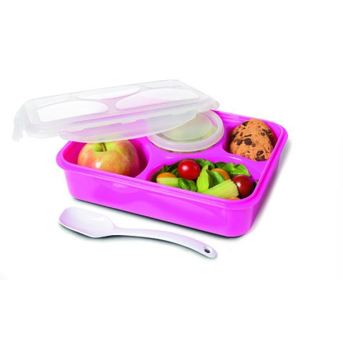 Kmart 5 Section Pink Container 5 Containers For Portion