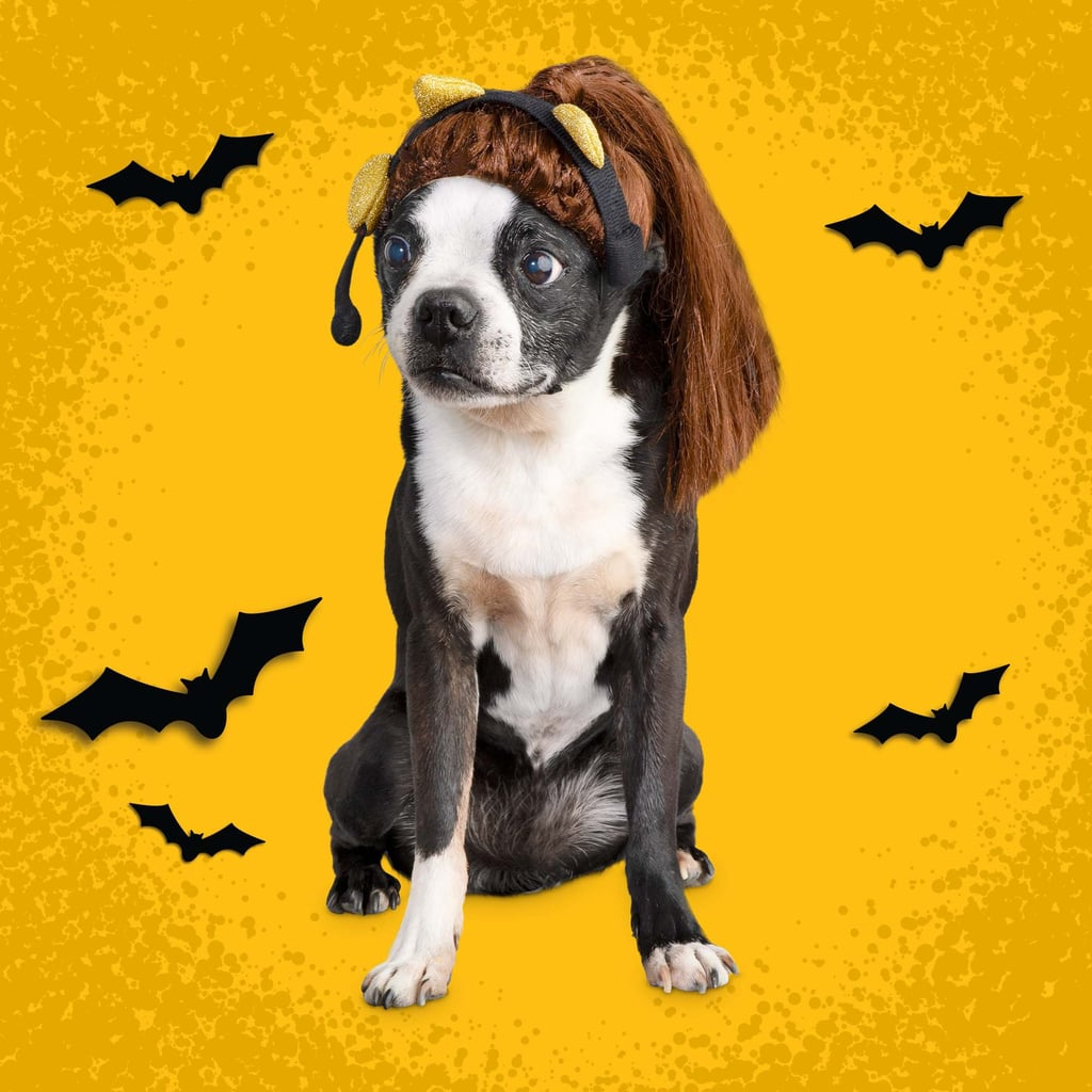 Ariana Grande Halloween Costume For Dogs