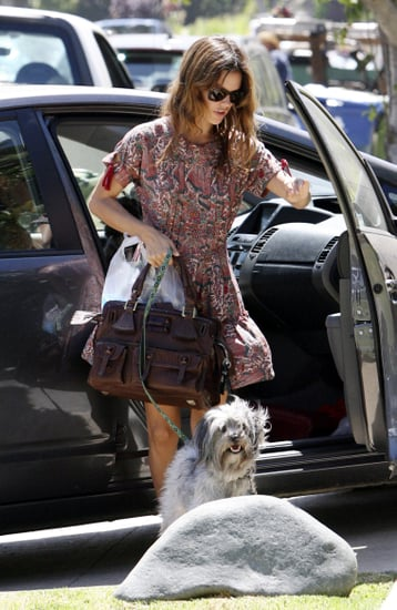Photos of Rachel Bilson With Her Chloe Elvire Handbag