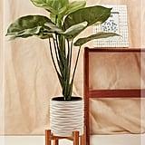 Joy Medium Wooden Stand Planter