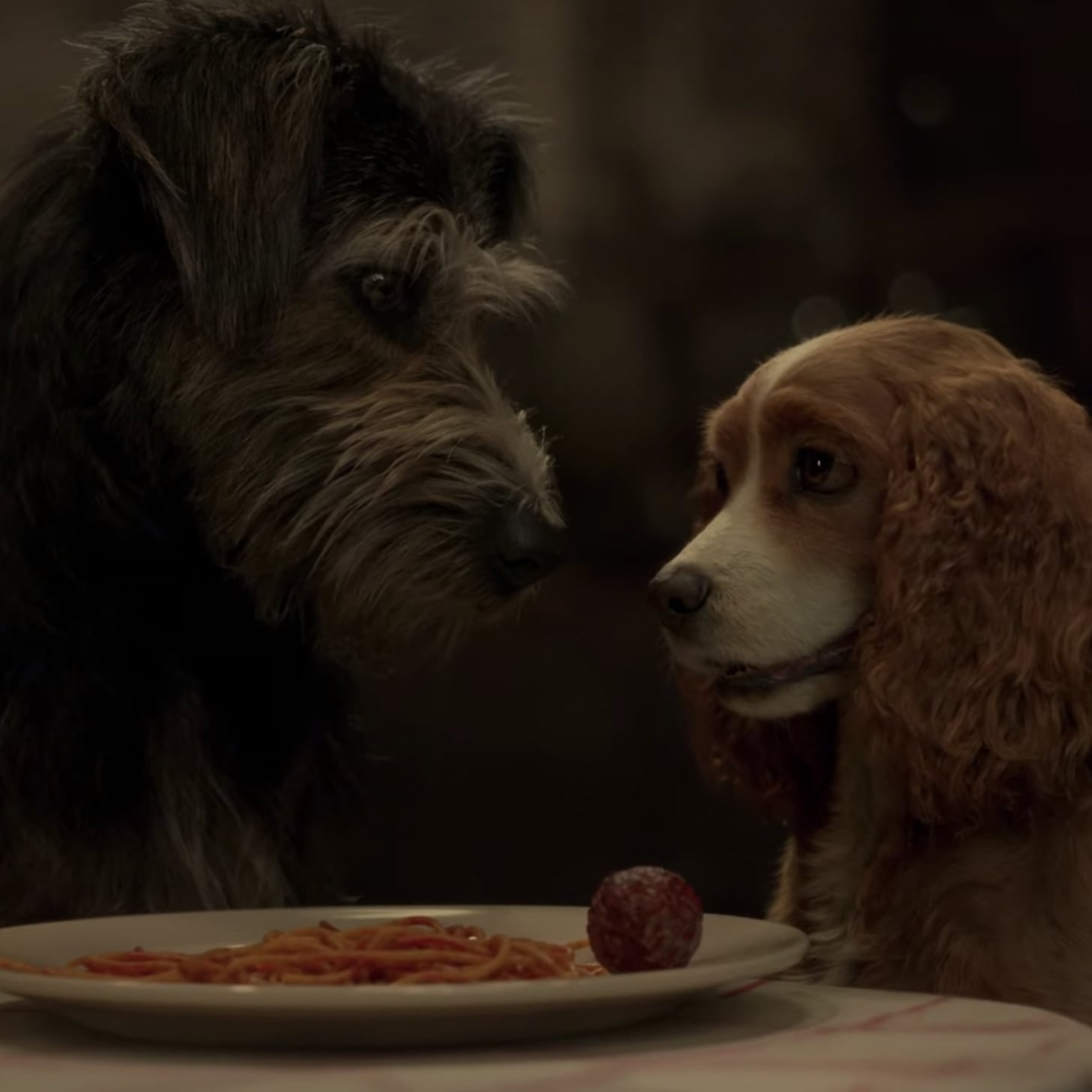 Lady And The Tramp 2019 Movie Trailer Popsugar Entertainment Uk