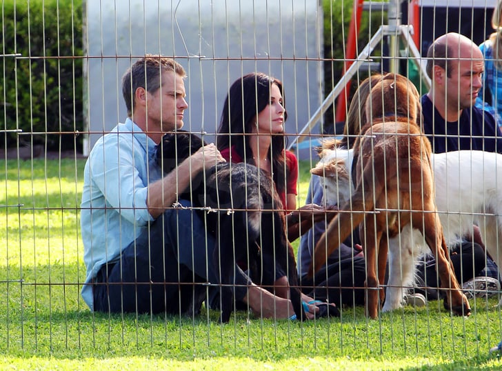 Courteney Cox and Brian Van Holt shared a scene with some dogs.