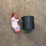 Baby vs. pot.