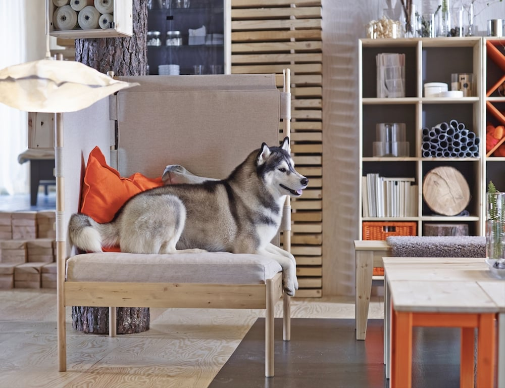 Ikea to Release Sprutt and Nornas Collections in February