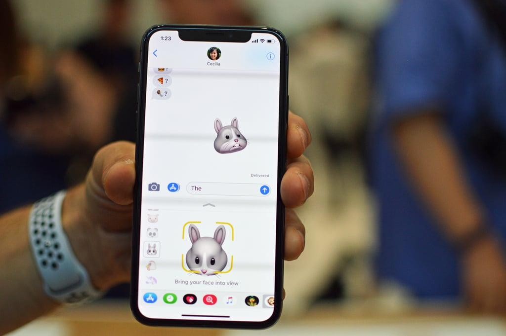 To get started with Animoji, the iPhone X will need to identify your face.
