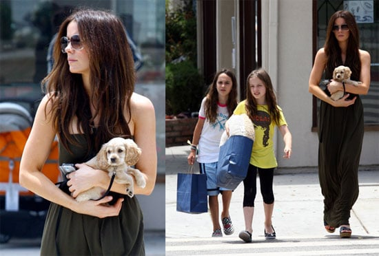 Kate Beckinsale Gets a New Puppy