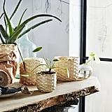 Kaffebona Plant Pots