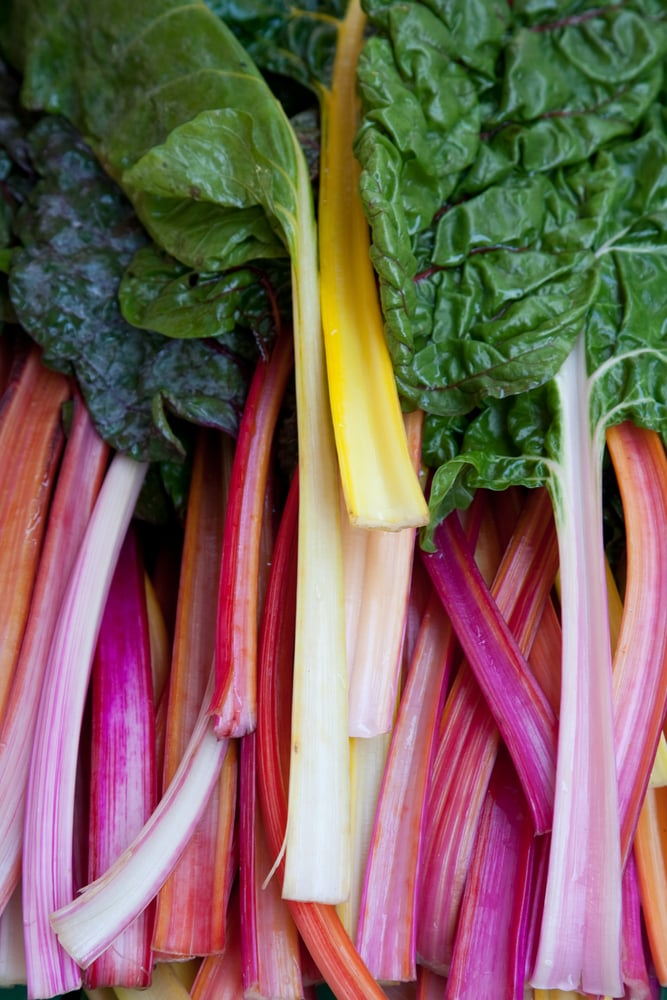 Swiss Chard Stalks