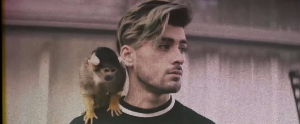 "Zayn Malik Throws a Wild House Party in the NSFW ""Still Got Time"" Music Video"