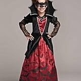 Batty Vampiress Costume