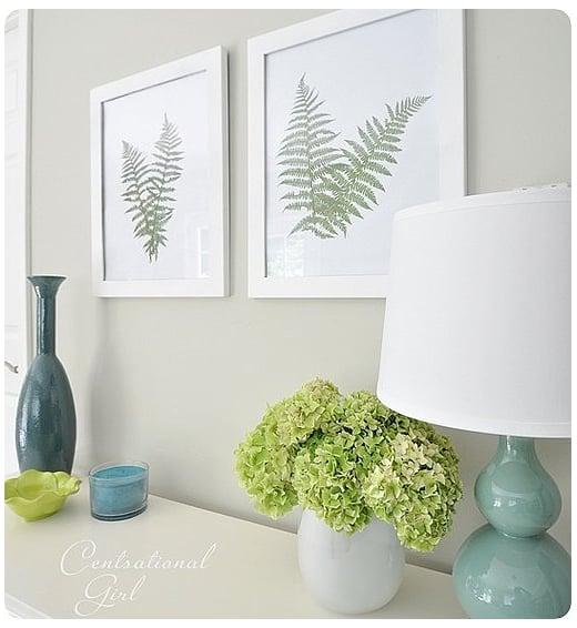 Frame ferns for a botanical art display, with Centsational Girl. Source: Centsational Girl