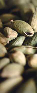 Health Benefits of Cardamom and Nutritional Information on the Medicinal Spice