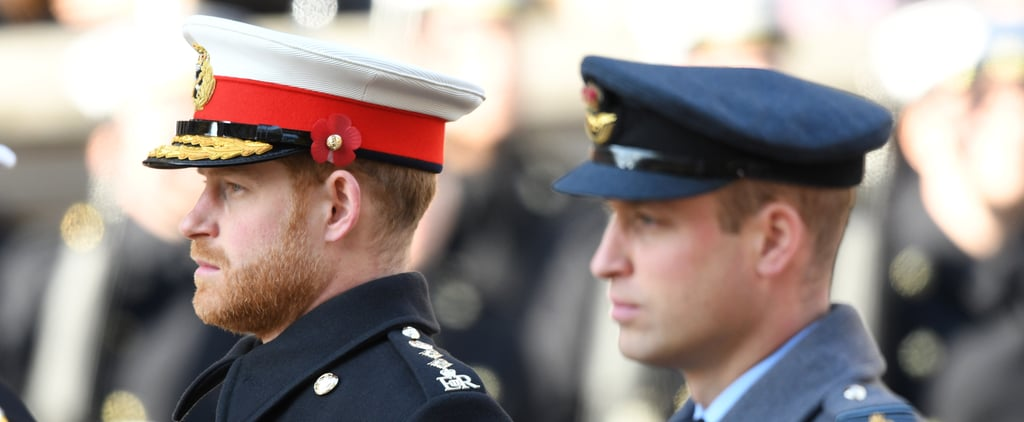 William, Harry Aren't Walking Together at Philip's Funeral