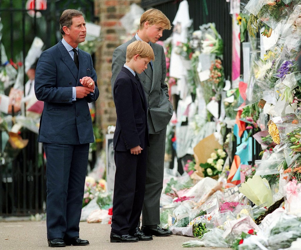 Prince William and Prince Harry Looking at Diana Tributes