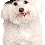 Rubie's Top Hat For Pets