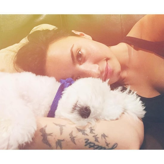 Demi Lovato Gets Tattoo of Her Dog January 2019