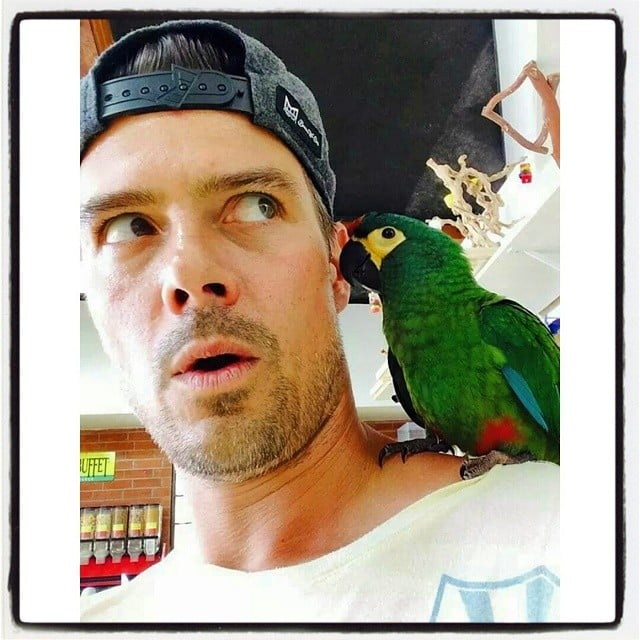 Josh Duhamel had a parrot on his shoulder. Source: Instagram user joshduhamel