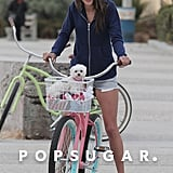 Alessandra Ambrosio rode a bike with her dog.