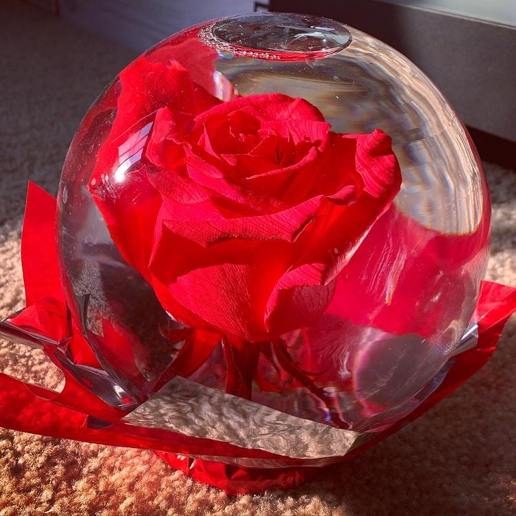 Where to Buy Rose Globes For Valentine's Day