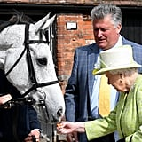 Queen Elizabeth II feeds a horse at Manor Farm Stables in 2019.