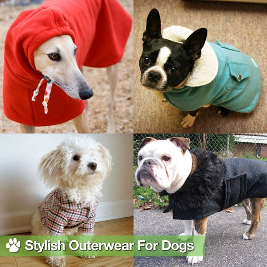 Pet Clothing and Coats For Winter
