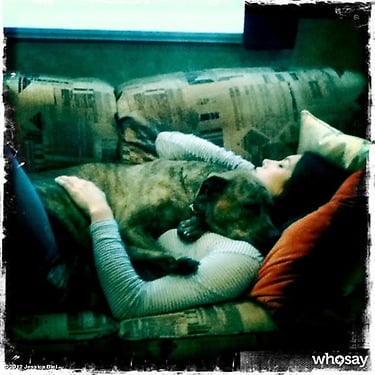 Jessica Biel cuddled up with her dog, Tina.  Source: Twitter user Jessica Biel