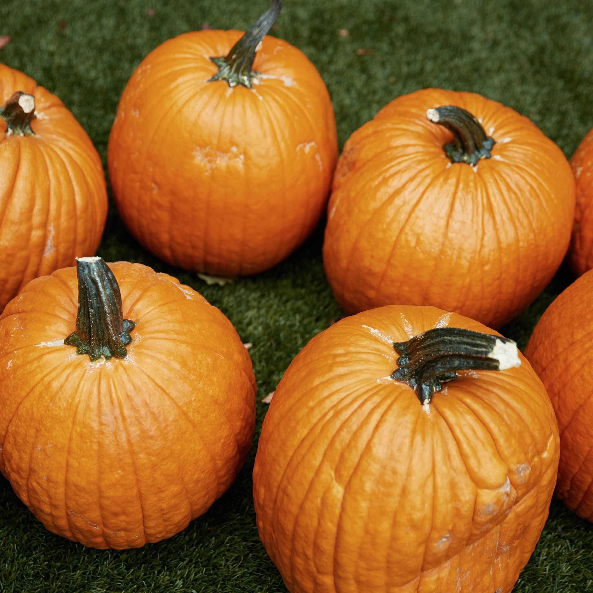 free disney pumpkin stencils popsugar smart living