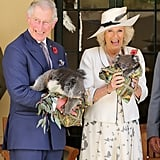 Charles and Camilla posed with the koalas in Adelaide, Australia, in 2012.