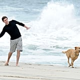 John Krasinski's faithful companion, Finn, played fetch with him on the beach in The Hamptons in May 2010.