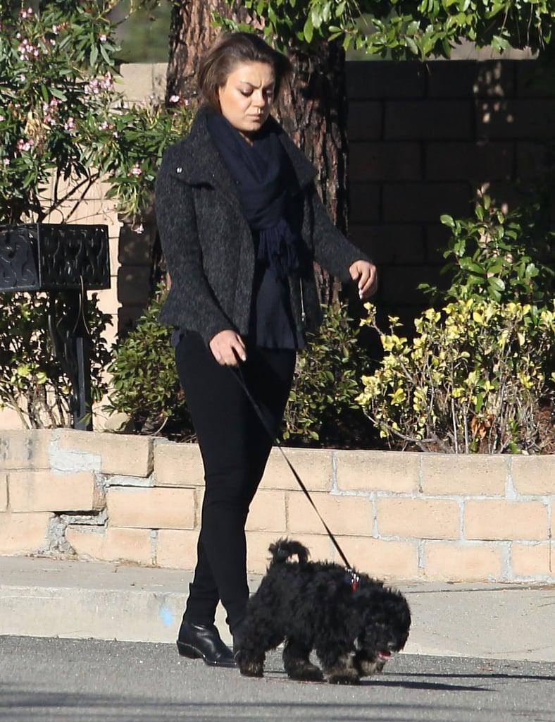 Ashton Kutcher and Mila Kunis Walking Their Dogs | POPSUGAR