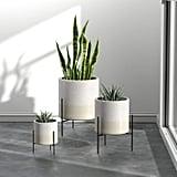 Rivet Mid-Century Ceramic Planter With Stand