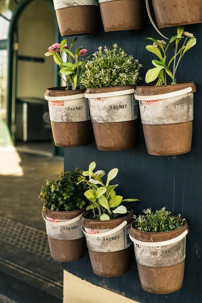 Plant an Herb Garden.