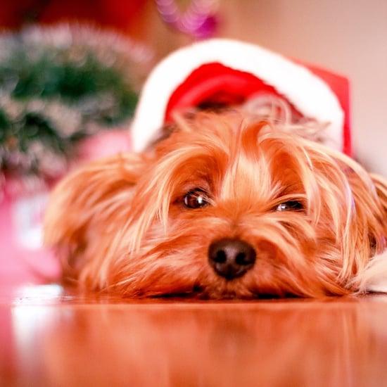 Revealing Santa