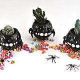 Black Spider Bowl