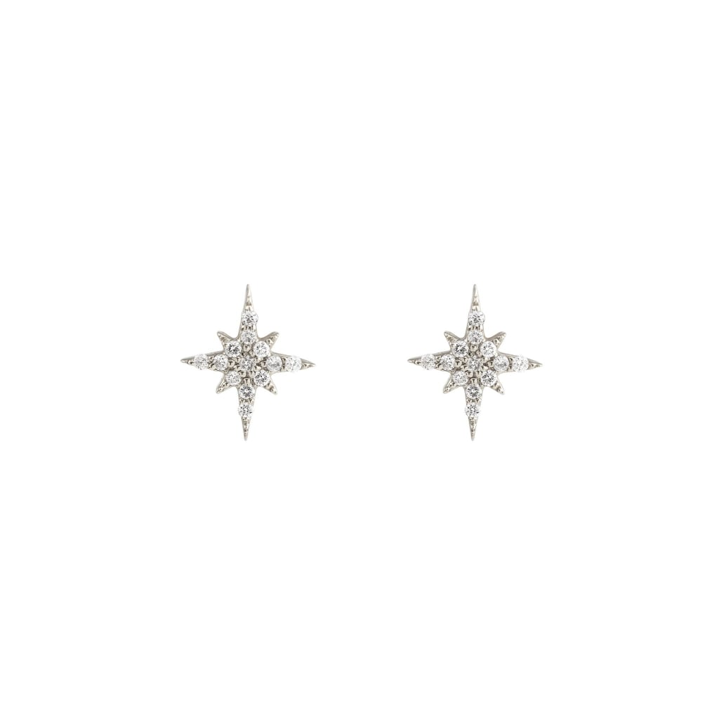 A Similar Pair to Pink's Earrings