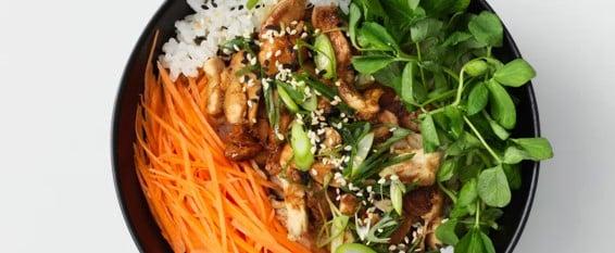 وصفة دونبوري الدجاج مع الترياكي من مطعم واغاماما